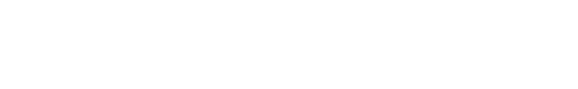 WordPress Demo 06